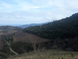 RESULTATS-2021-02-15_Stage Saint-Cyprien_19
